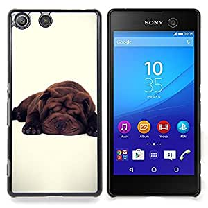 GIFT CHOICE / Teléfono Estuche protector Duro Cáscara Funda Cubierta Caso / Hard Case for Sony Xperia M5 // Cute Breed Dog White Sleepy Tired //