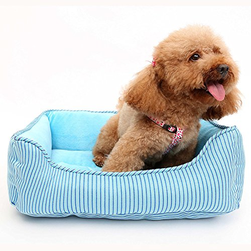 bluee CHONGWUCX Positive and negative dog kennel cat nest
