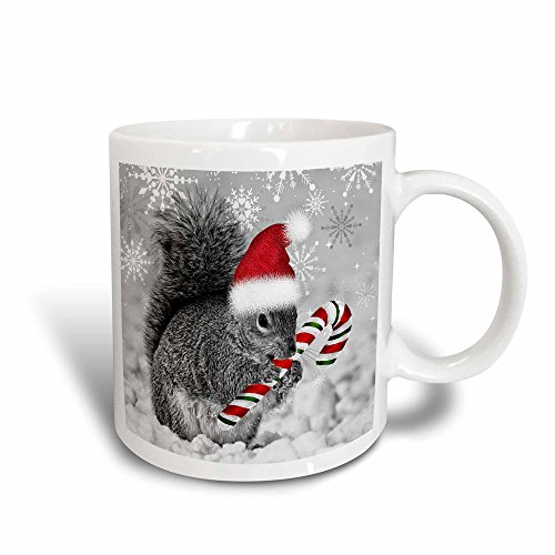 Christmas Candy Cane Mug - 3dRose mug_150177_3 This Cute Christmas Squirrel Has Candy Cane and Santa Hat in The Snow Covered Winter Landscape Magic Transforming Mug, 11-Ounce
