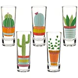 Party Shot Glasses – Cactus Shot Glasses with Colorful Print for Cinco de Mayo Tequila Fiesta- Set of 5, 2 oz Each Review