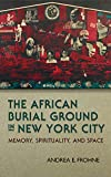 The African Burial Ground in New York City: Memory, Spirituality, and Space (New York State Series)