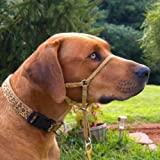 Comfort Trainer Head Halter, Black with Tan Nose Strap, Size 4