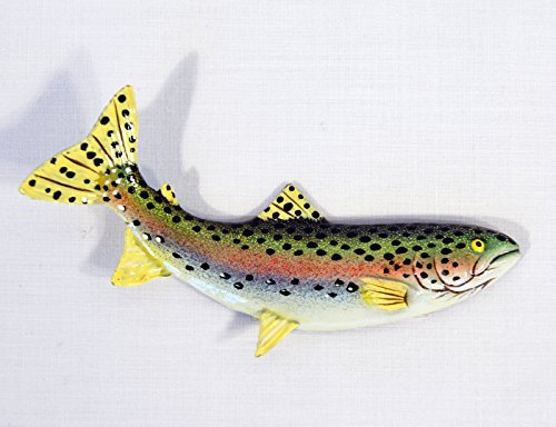 Fish Fridge Magnet - Hand Painted Rainbow Trout Fish Refrigerator Magnet