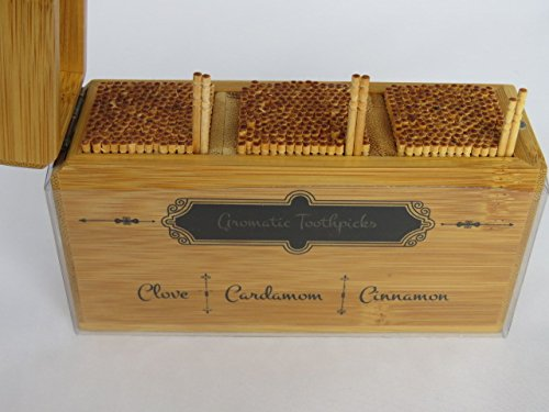 Ceylon Cinnamon, Clove, Cardamom Toothpick Holder - 450 Picks by Cinnamon Legends