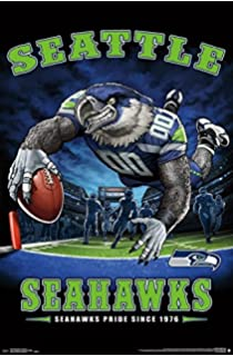 Amazon wincraft nfl seattle seahawks wcr63786613 carded trends international wall poster seattle seahawks end zone voltagebd Images