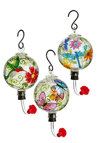 Painted Glass Hummingbird Feeder with Crackle Effect, Assorted Hummingbird, Dragonfly, and Floral (Crackle Hummingbird Feeder)