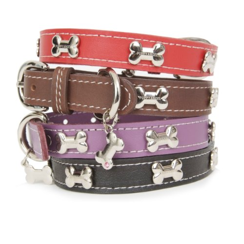 (Puppy Angel Silver Bone Leather Collar, XXXL, Black )