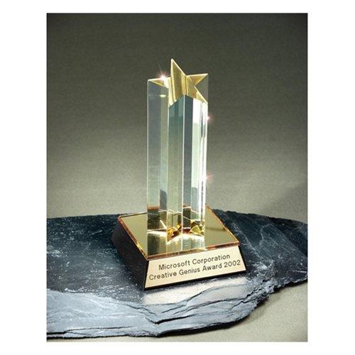 Shooting Star Acrylic Award with 3 lines of custom text (Award Star Trophy Shooting)