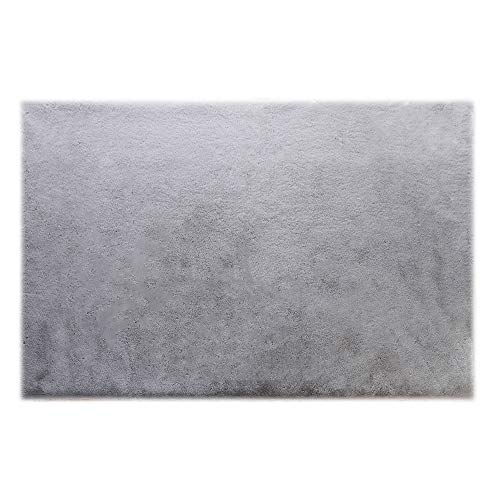LOCHAS Super Soft Faux Fur Rugs for Bedroom Bedside Rugs, Fluffy Fur Grey Rug for Girls Kids Nursery Room, Machine Washable, 2 x 3 Feet