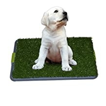 Easy Dog Potty Training - Made with Synthetic Grass - 3 Layered Systems - Great for Dogs Stuck in the House All Day - Indoor Use. A Patch of Synthetic Grass Held By an Elevated Grid System Fits Neatly in the Pan Tray. Dog Potty Without the Smell