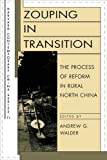 Zouping in Transition : The Process of Reform in Rural North China, , 0674968565