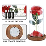 Childom-Mom-GiftBeauty-and-The-Beast-Rose-Kit-Roses-Enchanted-Red-Silk-Rose-with-Fallen-Petals-Led-Fairy-String-Lights-in-A-Dome-Natural-Base