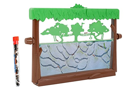 Live Ant Habitat Shipped with 25 Live Ants NOW (1 Tube of Ants) Tree House Theme by Nature Gift Store