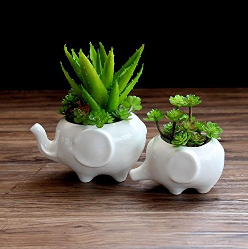 wish you have a nice day Set of 2 Cute Elephant Flower Pot,Modern White Ceramic Succulent Planter Pots/Tiny Flower Plant Containers (elephant)