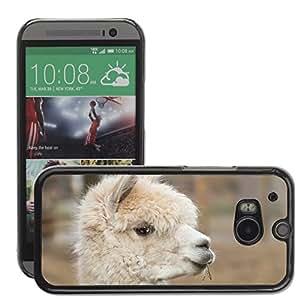 Hot Style Cell Phone PC Hard Case Cover // M00116266 Alpaca Pako Mammal Wool // HTC One M8
