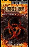 Firestorm: Book III of the Wildfire Saga