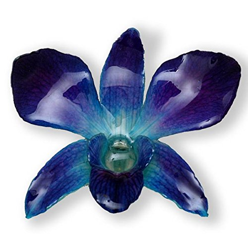Blue Dendrobium Orchid Flower (Dendrobium Orchid Pin)