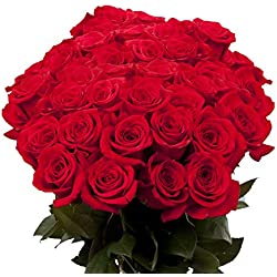 50 Red Roses for Valentine's Day