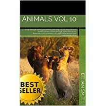 Animals vol 10: A trip through animal,pet,animals,pets,dog,cat,cats,dogs,Richard Avedon,dearie,masterpiece,pic,spew,honk,Irving Penn,foto,curious,hockey,cad,pawl,computerized axial tomography,nikon