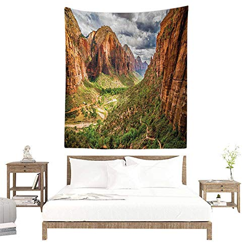 (alisoso Wall Art Tapestry,National Parks Home Decor,Utah Plateau Mojave Desert Southwest Erosion Native Aztec Artistic Print,Brown Green W55 x L55 inch Tapestry for Dorms)