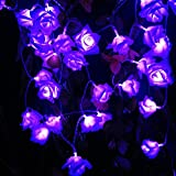 Novelty Rose Flower String Lights by Battery Operated for Wedding Garden Christmas Decor. 3M 9.8FT 30LEDs (Purple)
