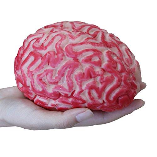 Megrocle 3D Bloody Brain DIY Horror Halloween Props