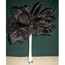 """Special Sale OSTRICH Feathers Wholesale Bulk 10/14"""" long DELUXE Tail Feathers BLACK Qty 50 for Eiffel Towers by Six Star Sales"""