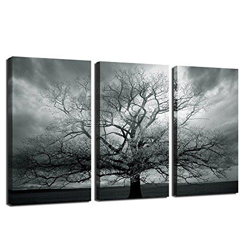 Black and white artwork amazon com