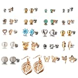 20 Pairs Women's Girl's Stainless Steel Assorted Multiple Stud Earrings Set, Hypoallergenic