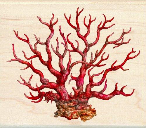 Inkadinkado Coffey Wood Stamp Coral