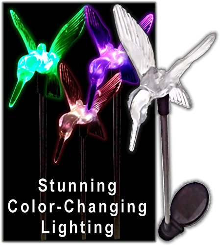 Hummingbird Outdoor Lights - 6