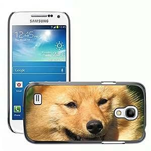Hot Style Cell Phone PC Hard Case Cover // M00114775 Dog Pet Animals Animal Language // Samsung Galaxy S4 Mini i9190