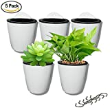 5 pack Lazy flower pots Suction Cup Water hanging plants Pot,Succulent plants and small flower pots Plants Pots Indoor out Wall Hang Flowerpot Window Boxes With 5 hooks Silver (white)