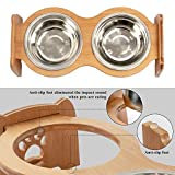 X-ZONE PET Raised Pet Bowls for Cats and