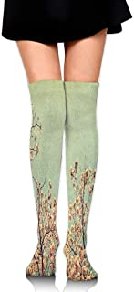 Casepillows Floral Details Trees Branches Spring Season Mountain Women's Fashion Over The Knee High Socks (60cm)