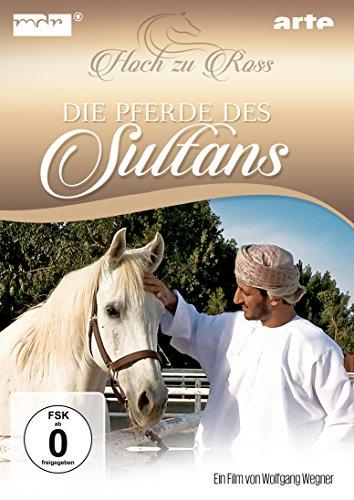 die-pferde-des-sultans-hoch