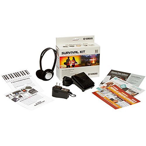 Yamaha PSRE263 61 Key Keyboard with Knox Bench, Stand, Studio Headphones, Survival Kit (Includes Power Adaptor) by YAMAHA (Image #6)