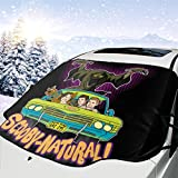 Scooby-Natural-Baby Car Front Windshield Snow Ice