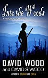 Into the Woods by David Wood front cover