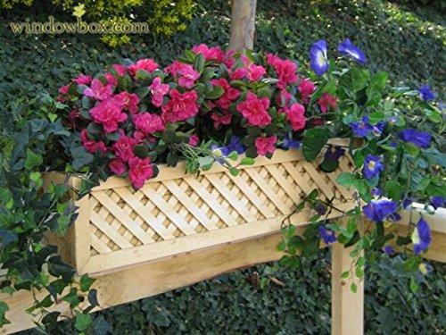 Cedar Lattice Rail Flower Box - 38 inches Long by Windowbox