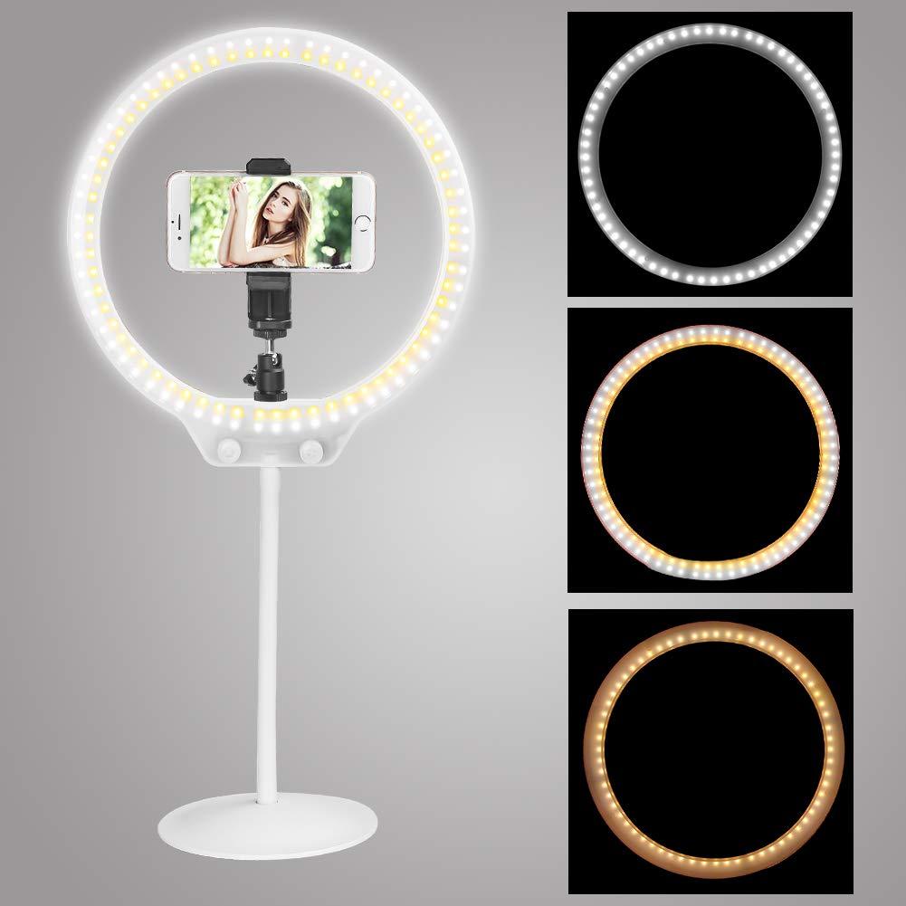 Anillo de Luz Fotografía, Zomei 10 Pulgadas Stepless Dimming Desktop 7.5W 5500K Anillo de luz con Mini Cabeza de Bola, Adaptador de Teléfono para Video de Youtube,Video- Selfie en Vine y Maquillaje
