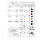 Molecular Model Kit 141 PCS, OCDAY Organic and Inorganic Chemistry Molecular Model Student Set (59 Atoms and 82 Bonds Parts)