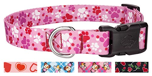 Country Brook Design Deluxe Puppy Love Dog Collar - (Top Paw Adjustable Dog Collar)