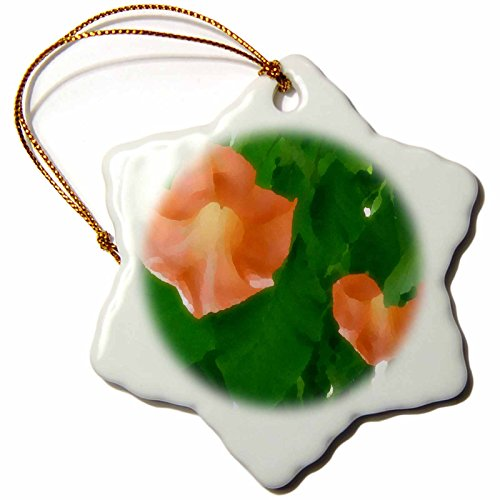 y - Photography Magic - Angel Trumpet Flowers - 3 inch Snowflake Porcelain Ornament (orn_174769_1) ()