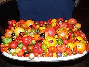 Pack de 200semillas de una mezcla de 200diferentes tipos de tomates.