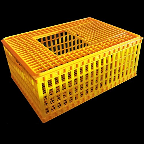 Chicken Crate For Sale Only 2 Left At 65