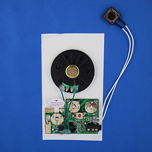 RE-Recordable PUSH BUTTON Sound Module/Chip (104 seconds)