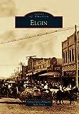 Elgin (Images of America)