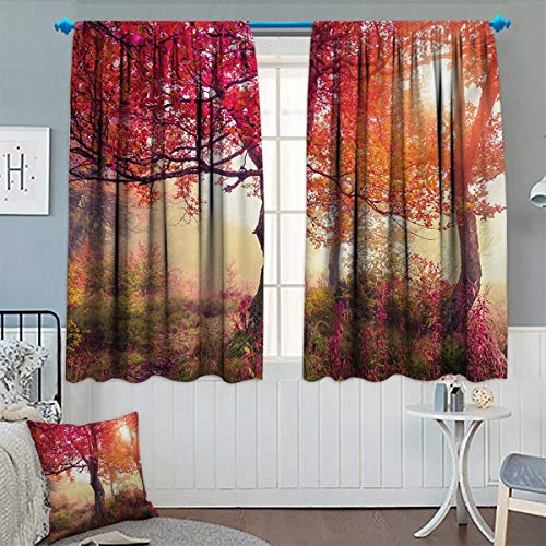 Chaneyhouse Forest Blackout Window Curtain Magical View in The Foggy Forest with Hazy Fairy Sun Beams and Fall Leaves Picture Customized Curtains 72