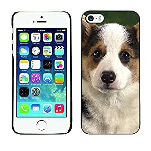 Be Good Phone Accessory // Dura Cáscara cubierta Protectora Caso Carcasa Funda de Protección para Apple Iphone 5 / 5S // Corgi Puppy Pembroke Welsh Dog
